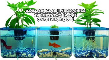 Jr ponics bubble garden fish garden for Hydroponic garden with fish